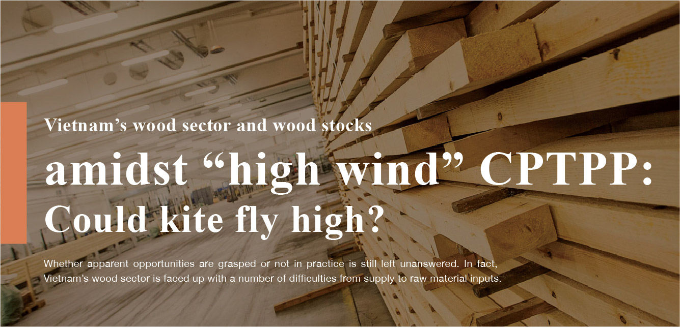 """VIETNAM'S WOOD SECTOR AND WOOD STOCKS AMIDST """"HIGH WIND"""" CPTPP: COULD KITE FLY HIGH ?"""