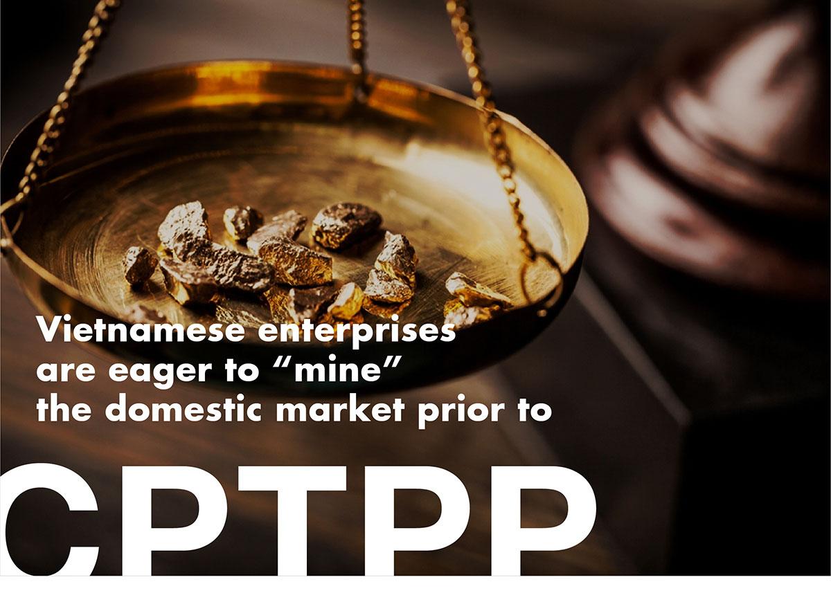 "VIETNAMESE ENTERPRISE ARE EAGER TO ""MINE"" THE DOMESTIC MARKET PRIOR TO CPTPP"